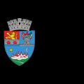 logo-Primaria-TM